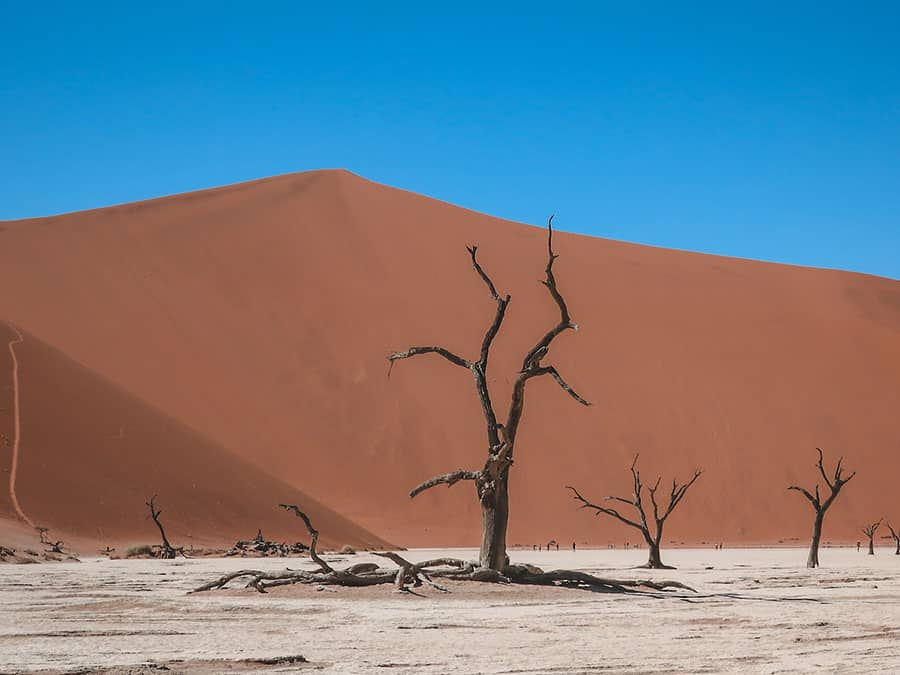 best countries to visit in Africa: Namibia