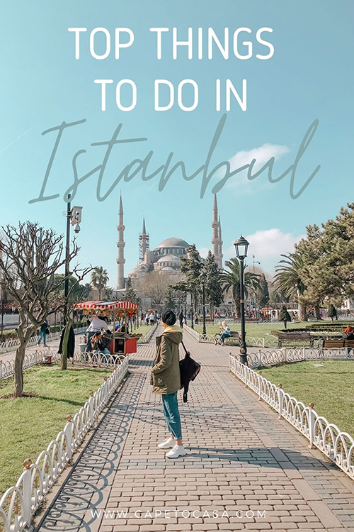 Things to do in Istanbul Turkey pin